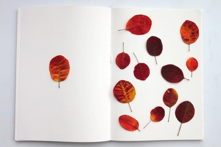 Blatt und Blätter